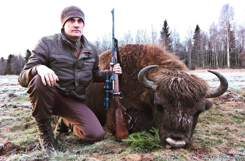 Охота на зубра