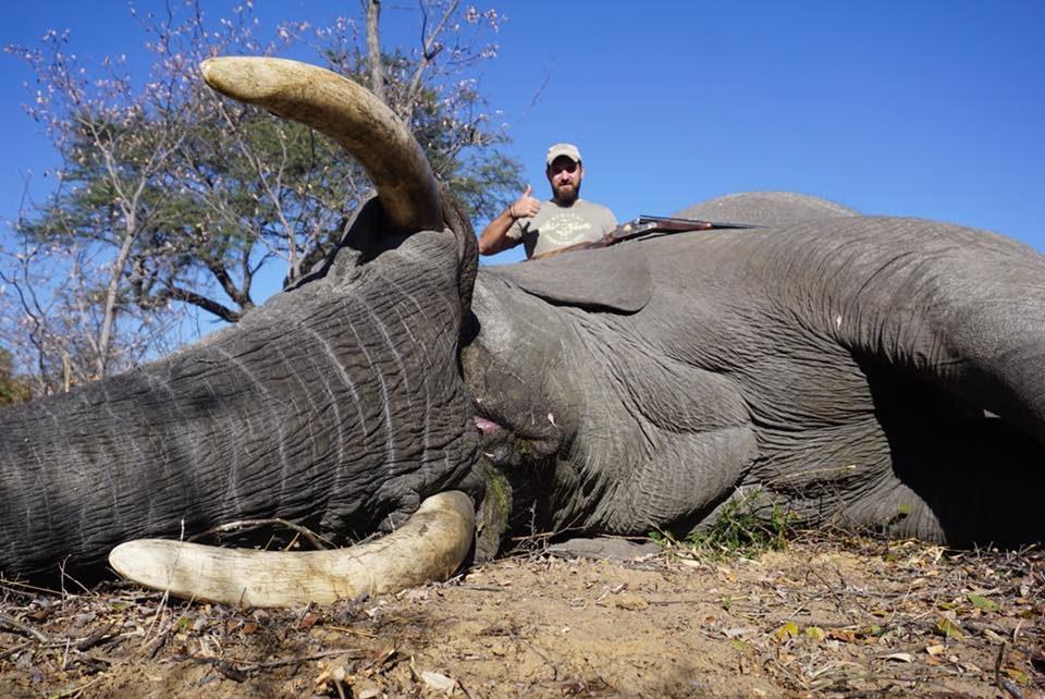Охота в Зимбабве 2018.