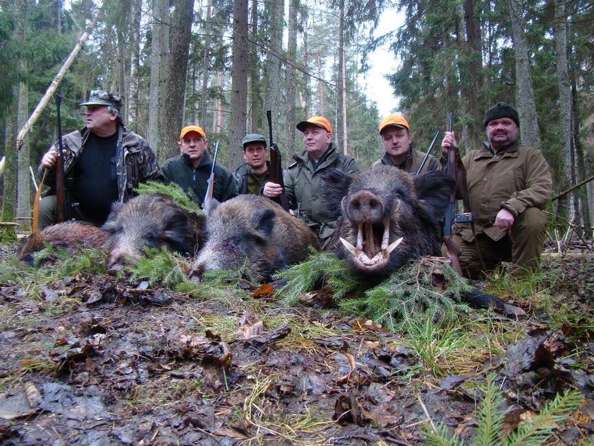 Corral hunt